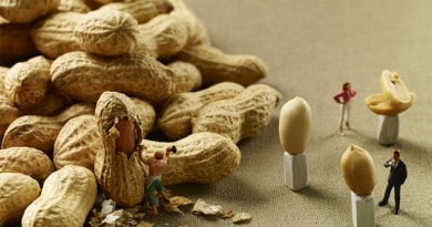 Valori nutrizionale arachidi